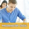 programacion lineal selectividad