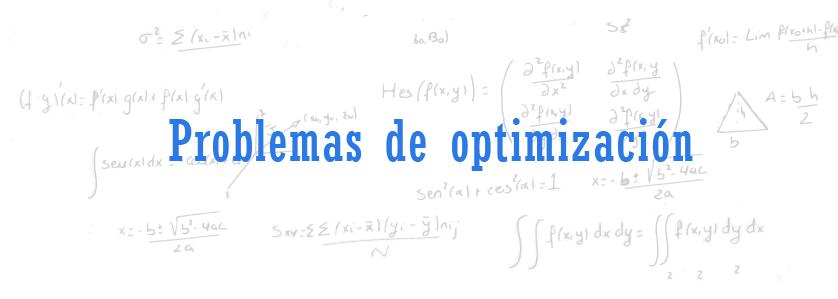 problemas de optimizacion selectividad